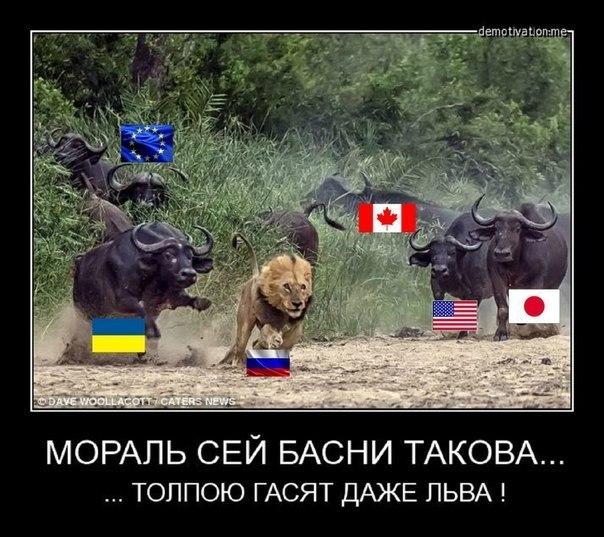 """Польша считает, что Россия еще не заслуживает смягчения санкций: """"Москва не сделала ничего для деэскалации кризиса на Донбассе"""" - Цензор.НЕТ 3669"""