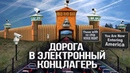 Валентин Катасонов Как Римский клуб и фонд Мон Пелерин изменили наш мир