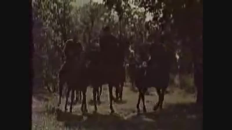 ბაში-აჩუკი, ბრძოლის სიმღერა Bashi achuki