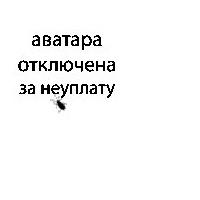 Jura Studynskyy, 18 июня 1991, Санкт-Петербург, id15957458