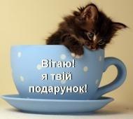 Привет!,доброе утро!,котик,животные.красиво.для тебя,подарок,поздравляю!Подарок