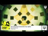 Paul Oakenfold &amp Disfunktion feat. Spitfire - Beautiful World (Original Mix)