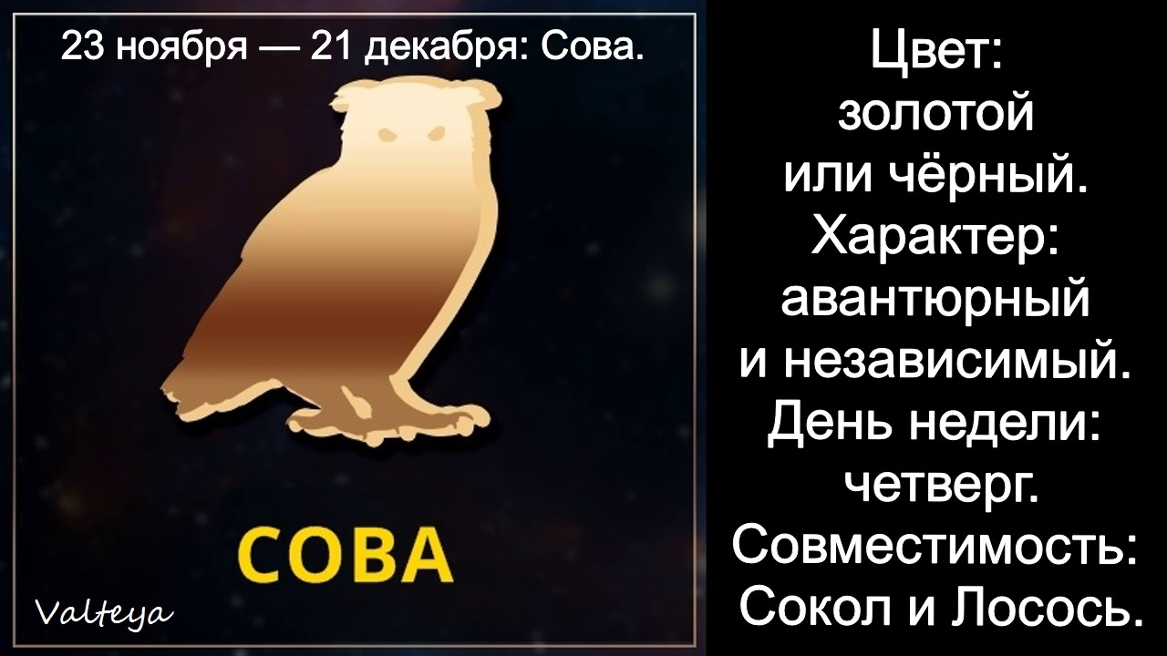 зодиак - Гороскоп американских индейцев. Тотемные животные по Знаку Зодиака. Астрология. B50aPFZ1CfM