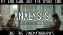 Analysis: The cinematography of Me and Earl and the Dying Girl
