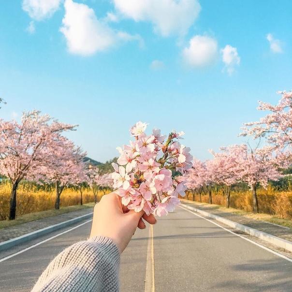 - а что дальше - а дальше весна..