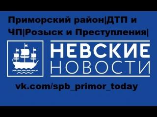 Невские новости. Отдел происшествий. (13.08.2018.) - ЧП в Приморском районе.
