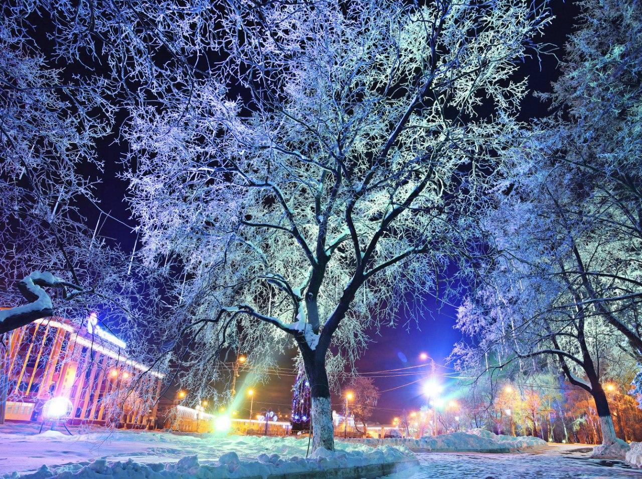 Вологда новогодняя (ФОТО) | Вологодская область