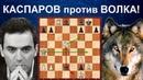 Шахматы СЕНСАЦИОННАЯ МИНИАТЮРА Чемпиона Мира Гарри Каспарова