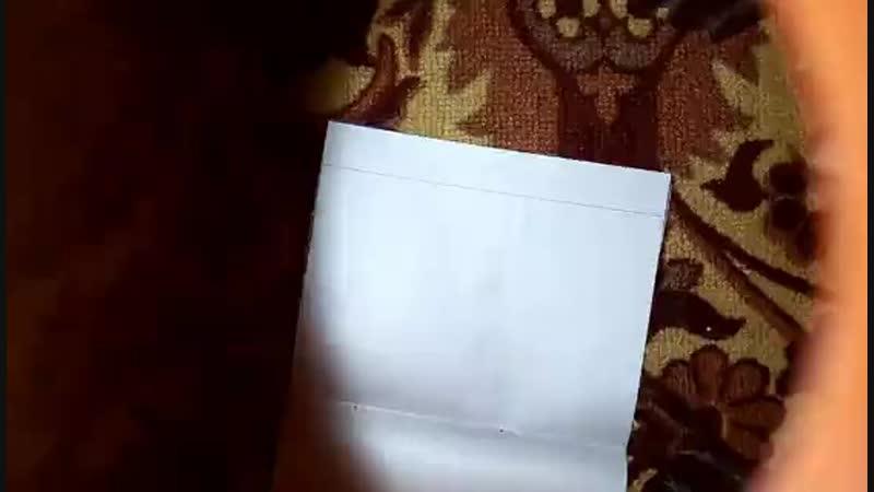 XiaoYing_Video_1550337318908_s02.mp4