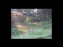 ВИА Орион Иволга Самое раннее редкое исполнение 720p via Skyload