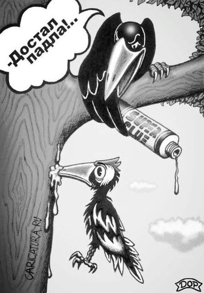 дятел против лесорубов на опушке лесорубы елки в кучу собирают. между кучей и пеньками рвет и мечет злобный дятел, развлечения лишенный. то крылом пенька касаясь, то стрелой взмывая к тучам, он