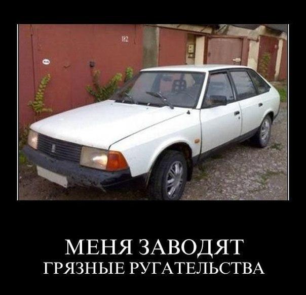 http://cs403226.vk.me/v403226814/af36/hDwqfDMRfN8.jpg