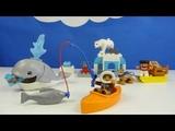 Строим из Lego Duplo, Play toys Lego, Unboxing, LEGO DUPLO 10803 Arctic - Вокруг света: Арктика