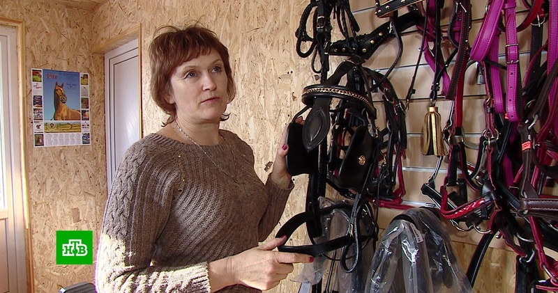 Самоучка из Курской области прославилась на всю Россию изготовлением амуниции для лошадей
