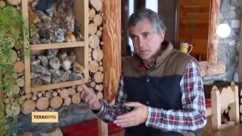 Автономный дом в Альпах