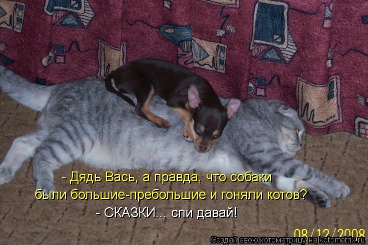 http://cs403430.vk.me/v403430142/571a/5cgBFgql2Nc.jpg