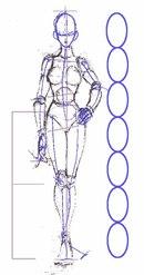 Показаны картинки по запросу Фигура Человека Рисовать.