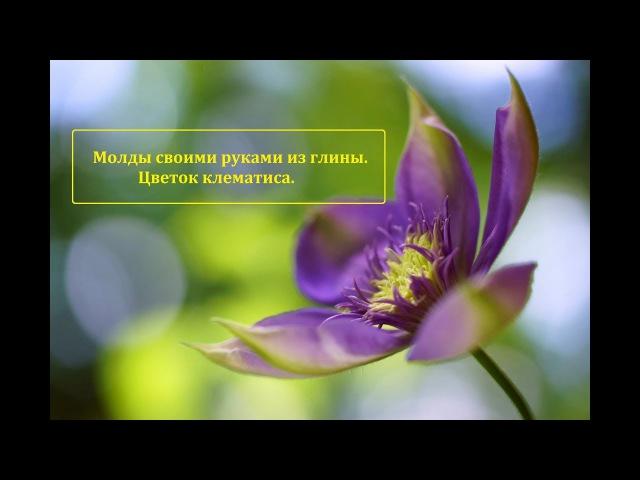 Мастер класс молды из глины своими руками Цветок клематиса Автор Юлия Козьякова
