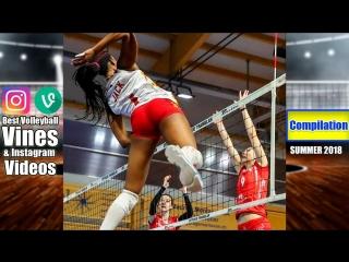 Best Volleyball Vines of SUMMER 2018