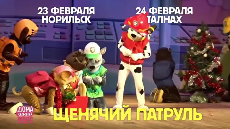 Щенячий патруль в Норильске 23 февраля!