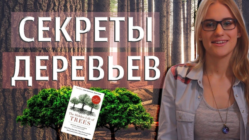 ЖИВОЙ ЛЕС?! Обзор: The Hidden Life of Trees. Peter Wohlleben [Magical Yana]