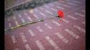 Поклонимся великим тем годам Памяти Победы в Великой Отечественной войне