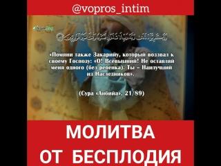 InShot_20180926_142513371.mp4