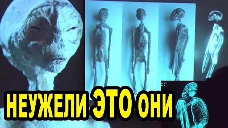 Они увидели этих СУЩЕСТВ и не поверили своим глазам Странные существа древности ИЛИ древ пришельцы