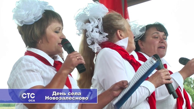 День села Новозалесново