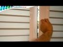 Рулонные шторы День-Ночь Закрытого типа для пластиковых окон
