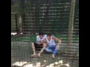 Que tiernos simios... / Cute chimps... ( W/ Ruggero Pasquarelli, @maca_miguel