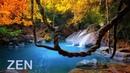 Música Zen y Sonidos de la Naturaleza Quitar el Estrés y Descansar la Mente