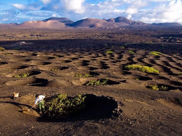 Лансароте  остров, входящий в Канарский архипелаг