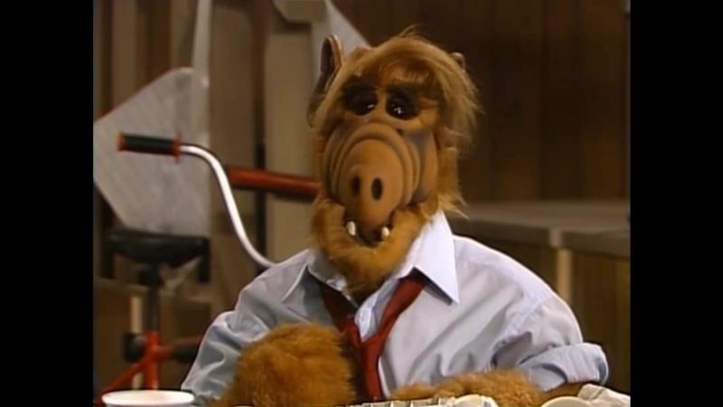 Alf Quote Season 4 Episode 4 Где деньги