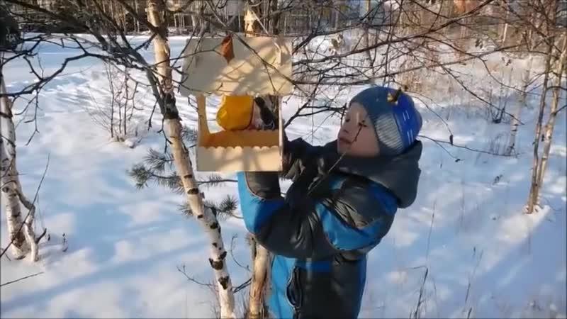 Кормушка для птиц руками юного мастера - Маленькие хитрости Домашний лайфхак