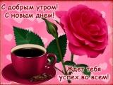 doc416011072_491826766.mp4