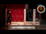 Shakira - I Can't Remmerber To Forget You (feat. Rihanna) Video Lyrics