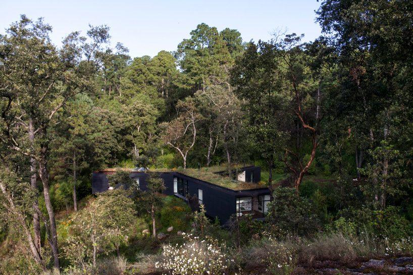 Дом в лесу за два часа езды от севера Мехико, Мексика