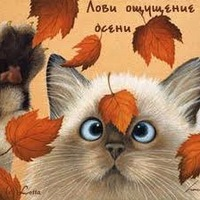 Настёна Романчук, 10 января , Хуст, id165621071