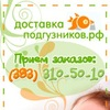Доставка подгузников в Новосибирске
