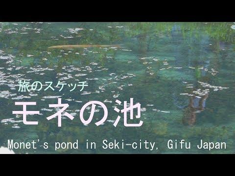 モネの池 岐阜県関市 2018  Monet's pond in Seki-city, Gifu Japan