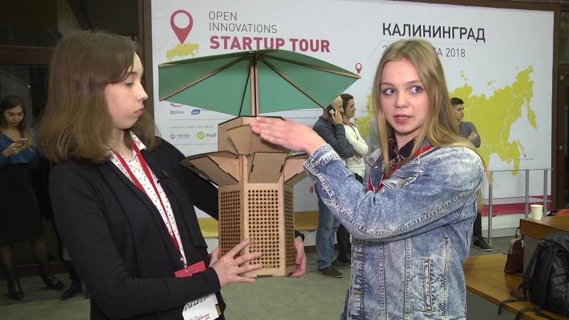 Пчёлкина Анна и Скидан Виталия проект «Cкамейка»