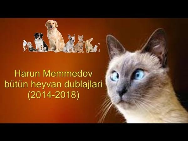 Harun Memmedov - Heyvanlar - 2014-2018 may bütün heyvan dublajları