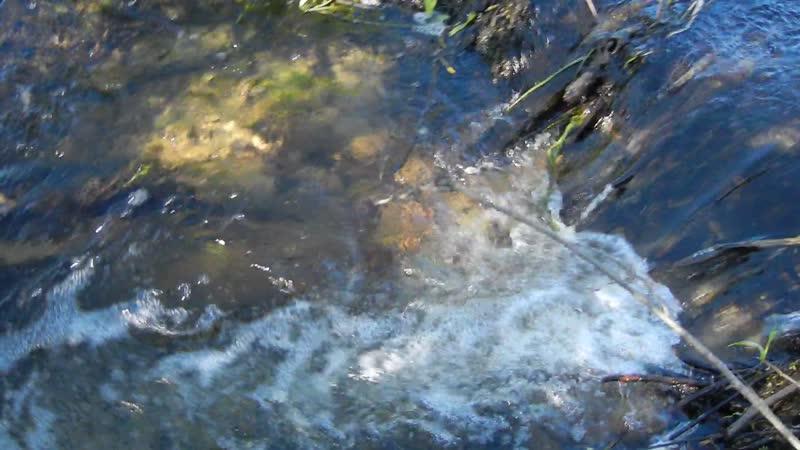 Чёрная речка близ Коньей гривы (Змеиная горка) М-Зона