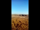 обкатка молодого жеребца калужская обл.ферма Наумово