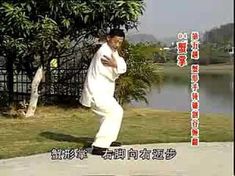 猿功地躺拳 第五趟 Yuan Gong De Tang Quan Di Wu Tang