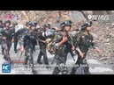Armed police in Beijing undergo harsh field training