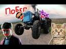 Приколы с котами с ОЗВУЧКОЙ – ЛУНТИК - ГАРРИ ПОТТЕР и МИСТЕР МАКС - Смешные коты и кошки - Domi Show