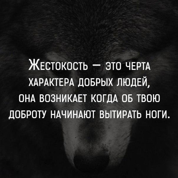https://pp.userapi.com/c543100/v543100354/1e7b0/4u5VJcxsTAw.jpg