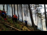 12.08.2018 Пожар в ялтинском ущелье